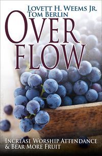 Overflow book cover