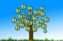 A tree with bags of money growing on it. Grants