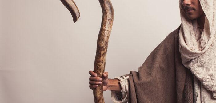 Shepherd holding a staff