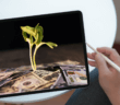 Person holding a tablet computer with a screen showing a plant seedling metaphorically growing from cash currency
